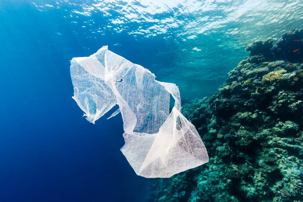 plastiktüte-in-meer